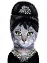 Audrey's Cat by Lynda
